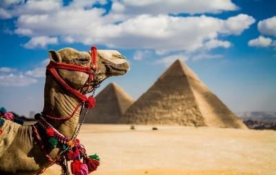 プノンペン発、エジプトツアー始めちゃいました!!